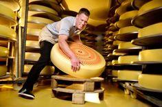 Emmentaler Swiss Cheese: Matthias Sempach
