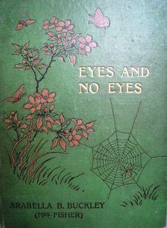 Antique Illustrated Book Eyes and No Eyes 1908 Arabella B Buckley. £20.00, via Etsy.