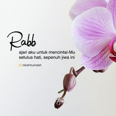 "Nikah Itu Indah di Instagram ""Rabb.. Jangan biarkan ada cinta di hati ini melebihi cinta kepadaMu, Aamiin.. 😇 ✨✨✨💕💕💕💕 . . Tag temen kalian Follow @nikahituindah Follow…"" Muslim Quotes, Islamic Quotes, Qoutes, Life Quotes, Doa Islam, Self Reminder, People Quotes, Life Inspiration, Java"