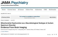 Mitochondrial Dysfunction as a Neurobiological Subtype of Autism Spectrum Disorder: Evidence From Brain Imaging