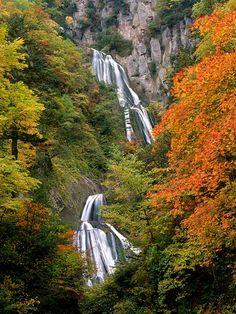 Fall Foliage Viewing, Hokkaido, Japan