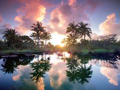 The World's Most Beautiful Botanical Gardens | Na 'Āina Kai Botanical Garden, Kauai, Hawaii