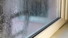 Combat humidity in your home with dehumidifiers that help eliminate moisture in the air that leads to the growth of harmful mold and airborne allergens. Window Condensation, Ridge Vent, Hvac Maintenance, Tabletop Water Fountain, High Humidity, Interior Windows, Dehumidifiers, Air Conditioning System, House Windows