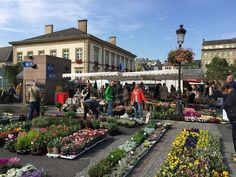 Vegetable Market in Place Guillaume II in Luxembourg Photo: Heatheronhertravels.com