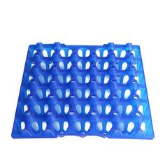1x Durable Egg Tray For Incubators Storage Hold 20 Ducks Peacock Eggs Supplies