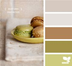 autumn macaron palette.  This site is really entertaining for picking colors.  You pick gradients you like - it offers suggestions.