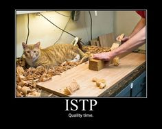 istp | istp | Personality, Perception and the Brain