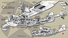 PBYCutaway.jpg 2.200×1.224 Pixel