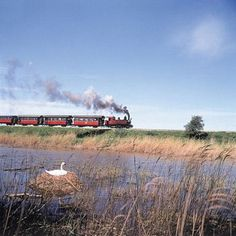 Des trains pour voir la France autrement: en baie de Somme, Picardie