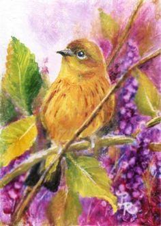 Paulie Rollins bird art