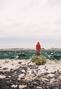 ISOLATED COLOR Rugged up for a walk on the beach to see what the weather has brought in . The Places Youll Go, Places To Go, To Infinity And Beyond, Adventure Is Out There, Pretty Pictures, The Great Outdoors, Art Photography, Beautiful Places, Scenery