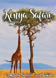 Kenya safari holidays will be one of the most memorable trips you ever take! Check out this guide to everything you need to know to plan your safari. Africa Destinations, Travel Destinations, Travel Tips, Travel Packing, Holiday Destinations, Travel Guides, Kenya Travel, Africa Travel, Usa Travel