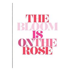 The Bloom Is On The Rose ❤ liked on Polyvore featuring text, quotes, words, backgrounds, fillers, phrase and saying