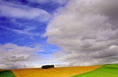 Ian Cameron Scotland Island in the Corn