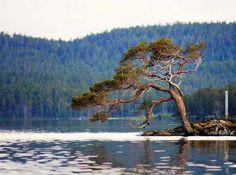 Inarijärvi Photo Kirsi Kyllönen