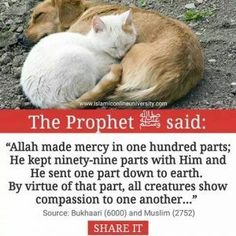 Ar- Rahman, Ar-Raheem: Most beneficient, Most Merciful: attributes of Allah. Prophet Muhammad Quotes, Hadith Quotes, Muslim Quotes, Quran Quotes, Islam Hadith, Islam Quran, Alhamdulillah, Islam Muslim, Muslim Women