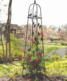 This Perching Birds Climbing Plant Obelisk by Panacea Products is perfect! This Perchin Obelisk Trellis, Garden Trellis, Vine Trellis, Clematis Armandii, Verticle Garden, Rose Arbor, Parasols, Metal Garden Art, Bird Perch