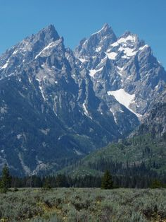 View from Cathedral View turnout in July, Grand Teton National Park, Wyoming