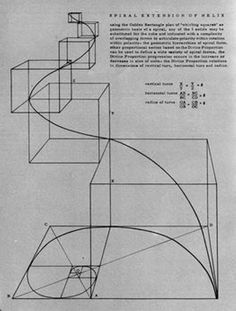 larameeee: Anne Griswold Tyng Form finds Symmetry in Geometry in Zodiac 19 1969 Divine Proportion, Graphisches Design, Sacred Architecture, Golden Ratio Architecture, Math Art, Grafik Design, Geometric Shapes, Science, Illustrations