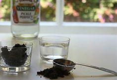 Tester le PH du sol avec du vinaigre blanc