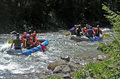 Splav rieky Hron je príjemnou aktivitou na hornom toku (nad Zvolenom) a rovnako príjemným relaxom na svojom dolnom toku (pod mestom Zvolen). Hron je splavný z Červenej Skaly až do jeho ústia do Dunaja pri Štúrove., Water, Outdoor, Gripe Water, Outdoors, Outdoor Games, The Great Outdoors
