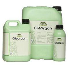 Oleorgan 1L