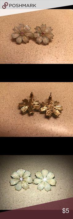 🌼 Floral earrings 🌼 Never worn due to gauging my ears 💛🌼 Jewelry Earrings