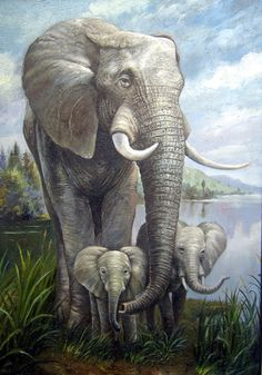 D08A001-40X80 Oil Paintings Animals Paintings