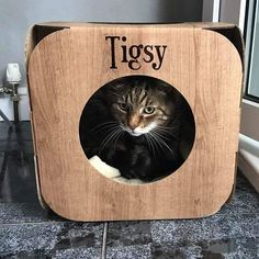 Yay! so glad he likes it!   Tigsy is a handsome boy I love his markings  #cat #catsofinstagram #cats_of_instagram #catfurnature #catfurniture #catsinboxes #cattoy #INSTACAT_MEOWS #cutecat #PurrMachine #catsinboxes #catbox #Excellent_Cats #BestMeow #dailykittymail #thecatniptimes #catcube #catpod #ArchNemesis #FlyingArchNemesis #myindoorpaws #ififitsisits #cutecatcrew #catchalet #catnip #themeowdaily #kitty #catpyramid #miuandmaosfurriends