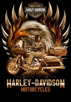 http://harleydavidsonzone.com/images/Harley_Davidson_Zone_Landing_Page.jpg