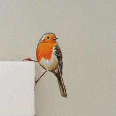 Painted Birds - At Door frames or Recepticles