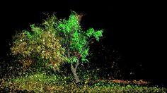Houdini Tree Wire System on Vimeo