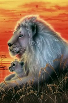 Art Discover Handsome Sandy African Male Lion Resting With His Cub. Big Cats Cool Cats Lion King Drawings Tiger Artwork Lion Pictures Lion Painting Male Lion Le Roi Lion Lion Of Judah Tiger Illustration, Lion Wallpaper, Animal Wallpaper, Wallpaper Maker, Tiger Pictures, Animal Pictures, Animals Beautiful, Cute Animals, Lion King Drawings