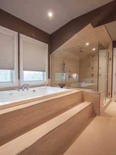large stepup bath tub and standing shower