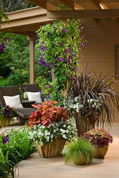 Gorgeous Planters Ideas for Outdoor Decor Ideas
