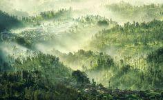 Tengger Highland  © Arnov Setyanto