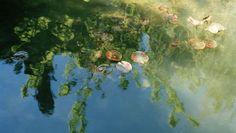 Crystal Clear - I riflessi della realtà trasfigurata da Marta Rovatti Studihrad