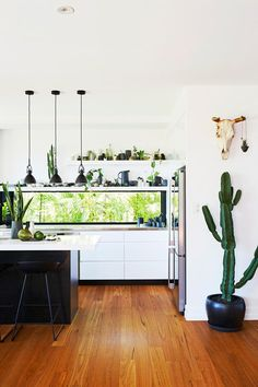 """After originally hiring an architect who quoted $500k over their total budget, these homeowners decided to take matters into their own hands, completely a gruelling live-in renovation of an old worker's cottage themselves. [Tour the home that made it into third place here >](https://www.homestolove.com.au/tips-from-a-diy-renovation-of-a-workers-cottage-5060