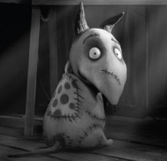 Frankenweenie's Sparky he's adorable!