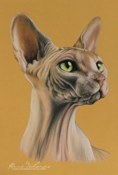 Funny face All Types Of Cats, Pastel Art, Funny Faces, Lion Sculpture, Statue, Illustration, Painting, Animals, Cat Breeds