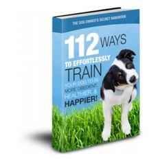 Dog Training School, Dog Training Classes, Dog Training Videos, Training Your Dog, Chameleon Care, Animal Reiki, Dog Rates, Garden Animals, Cat Pee