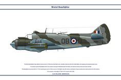 The Bristol Beaufighter heavy fighter entered service in 1939 and proved itself to be a versatile combat aircraft in the night-fighter, anti-shipping, and torpedo bomber roles. 12 countries used th...