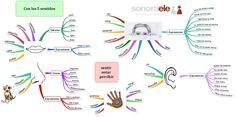 B2/C1 - Con los 5 sentidos. Ejercicio de escritura creativa construido en mi blog Online Spanish.