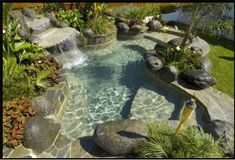 Here is the small swimming pool perfect for a small space in your backyard that is enclosed with a clean white fence and green grass. Description from pinterest.com. I searched for this on bing.com/images
