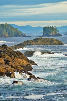 Off Ucluelet, on the west coast of our beautiful (Vancouver) Island by Laurie Milton