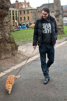 Timothy Foster Photographer & Filmmaker: A street cat named Bob