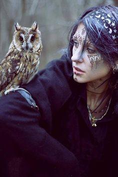 owl, nature, and bird image