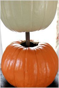 pumpkin topiary fall decorating ideas, container gardening, crafts, gardening, seasonal holiday d cor, Start by placing a Styrofoam block in your container Use a dowel to stack your carve able pumpkins You will need to remove two stems off of the two bottom pumpkins
