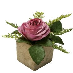 Single Rose Design. Even a single flower, when displayed in a small arrangement can make a beautiful statement. See instructions: http://www.shophouseofdesign.com/design-projects-valentine-rose