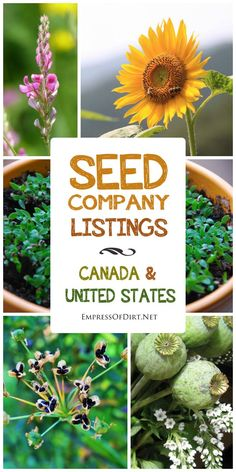 Seed company listings for Canada and the United States.